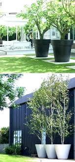 large garden flower pots large garden pot large garden plant pots oversize tree planters would be large garden flower pots