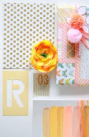 Salmon Colored Paper Plates L L L L L