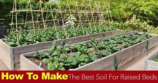 making the best soil for raised beds