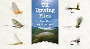 Fly Fishing Fly Identification Chart View Our Upwing And Mayfly Species Fly Fishing Chart