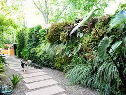 Garden plant wall