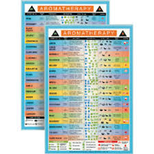 Details About Aromatherapy Mini Reference Chart