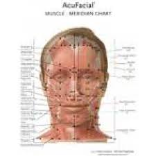 Acupuncture Facelift Points Chart Helio Usa Inc Acufacial Meridian Muscle Chart Bc 104