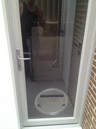 dog door for glass panel door