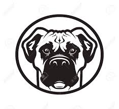Outline Silhouette Of A Dog Head Boxer Or Pitbull Mascot Vector