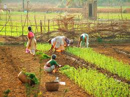 Image result for rural development in India