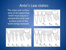 Bridge Law Chart Antes Law Update Your Dental Chart To Lower Your