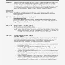 Retail Sales Executive Resume Sales Executive Resume Sample Pdf New Retail Sales Manager Resume