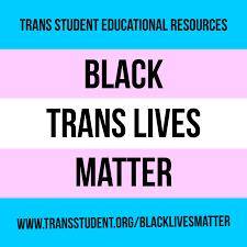 <b>Black</b> Trans Lives Matter <b>Stickers</b> (25) – Trans Student <b>Educational</b> ...