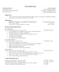 Styles Chronological Resume Objective Sample 100 Good Research Paper