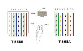 cat 6 vs 5 wiring diagram wiring diagram simonand cat6 pinout at Cat 6 Wiring Diagram