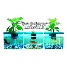 home improvement contractor license kids fish tank tanks catalog request hydroponic garden system hydroponics for n