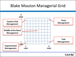 blake mouton managerial grid business share