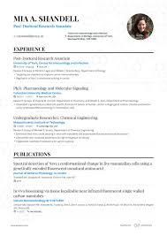 Resume Suggestion Professional Cv Resume Builder Pricing Enhancv