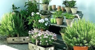 patio herb garden apartment balcony 7 tips gardening urban ideas w herb wall outdoor 9 pocket indoor balcony vertical garden