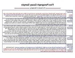 5 Paragraph Essay Examples 5 Paragraph Essay Format Fast Essays Service