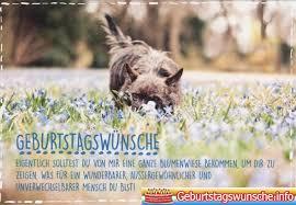 Geburtstagswünsche Für Hunde Geburtstagswünsche Für Haustier Hund