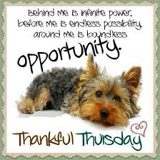 Thursday Morning Quotes Best Thursday Morning Quotes Unique Thursday Thursday Pinterest