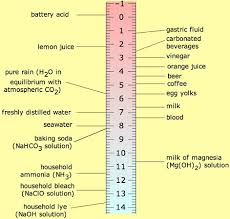Ph Of Beverages Chart How Certain Beverages Affect Tooth Decay Science Fair Project