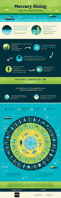 Mercury Rising Enjoy Fish Without The Risk Fix Com