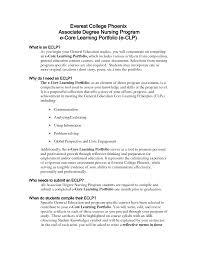 portfolio essay example com  portfolio essay example 11 reflective