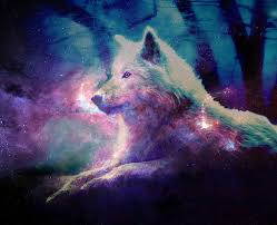 galaxy tumblr hipster wolf. Delighful Wolf Hipster Wolf Wallpaper  WallpaperSafari Galaxy Tumblr Related  Keywords U0026 Suggestions  With O