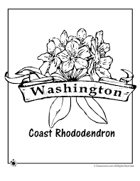 Small Picture State Flower Coloring Pages Washington State Flower Coloring Page