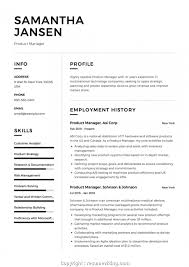 Executive Product Manager Resume 12 Product Manager Resume Samples