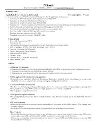 Fake Resume Example Stay At Home Mom Examples Elegant Work Builder