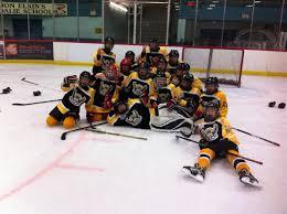 Plum Tree Panther Hockey ...