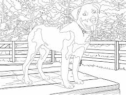 Small Picture Coloring Pages The Magnificent Mister Miller