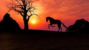 horses running in the sunset.  Horses Horse Running Under Sunset In The Desert Illustration Of A Horse Running  Sunset To Horses In The N