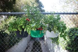 how to start a small garden. Opt For Vertical Gardening If You Have A Balcony, Small Patio, Rooftop Or Even An Open Window That Is Sunny. Helps In Creating More How To Start Garden