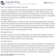 He waited for you': Scathing letter from animal rescue slams ...