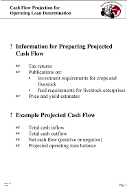 How To Do A Cash Flow Projection Cash Flow Projection For Operating Loan Determination Pdf