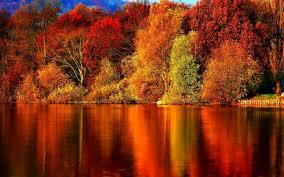 Autumn Wallpaper Autumn - Autumn Wallpaper Hd - 1280x800 - Download HD Wallpaper - WallpaperTip