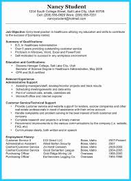 14 Alive Professional Summary On A Resume Examples Sierra