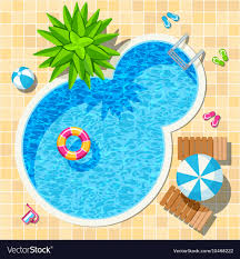 Top view relax swimming pool Royalty Free Vector Image