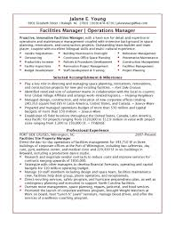 Resume Professional Summary Examples Of Summary For Resume Accounting Resume Summary 49