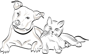 dog and cat black and white. Perfect And Dog Cat Pet Silhouette Animal With And Black White Pixabay