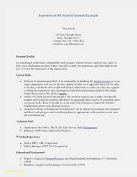 How To Build A Resume For Free Fresh Build Free Resume Elegant