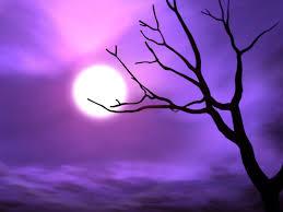 bild purple himmel wallpapers and stock photos