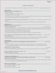 62 Best Of Gallery Of Investment Banking Resume Sample Natty Swanky