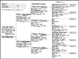 Pedigree Or Family Tree Charts National Archives