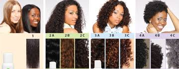 Black Natural Hair Types Chart Curl Type Chart Gallery Of Chart 2019