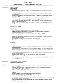 Resume For Cashier Job Cashier Resume Samples Velvet Jobs 89