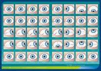 Toni Miller Iridology Chart 13 Best Iridology Images Iridology Chart Health Chart