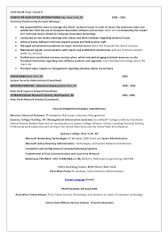 Fine Design Information Security Resume Information Security Officer