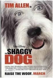 26 bộ phim hay nhất về loài chó mà bạn nên xem