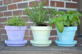mini herb garden with chalkboard painted pots
